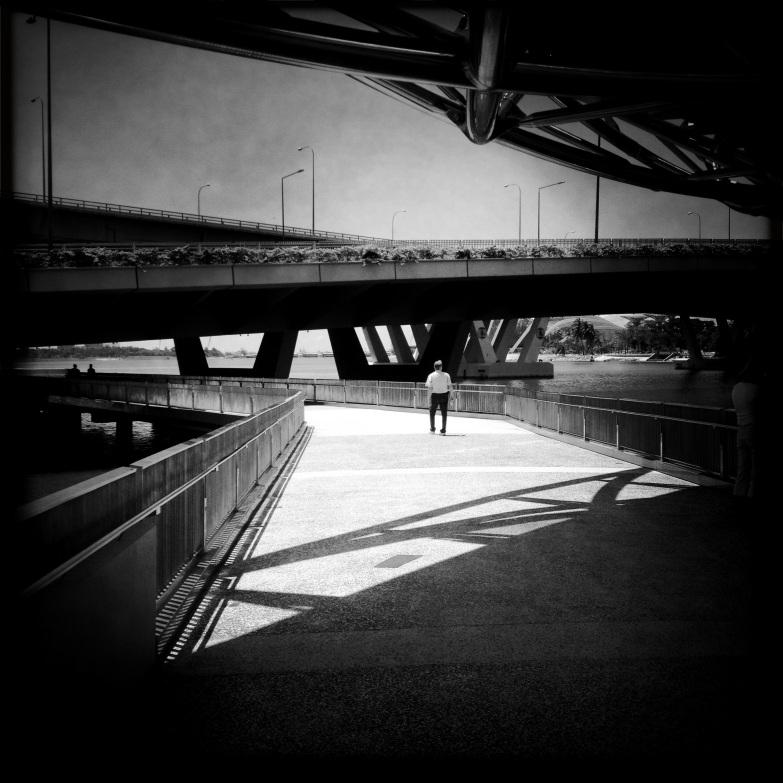 Bridges around the bay.
