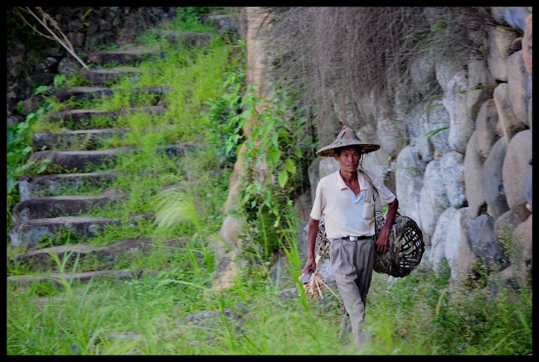 Basket_weaver_walking
