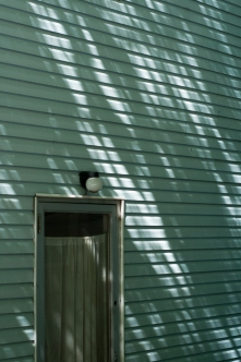 Augusta_Shadows